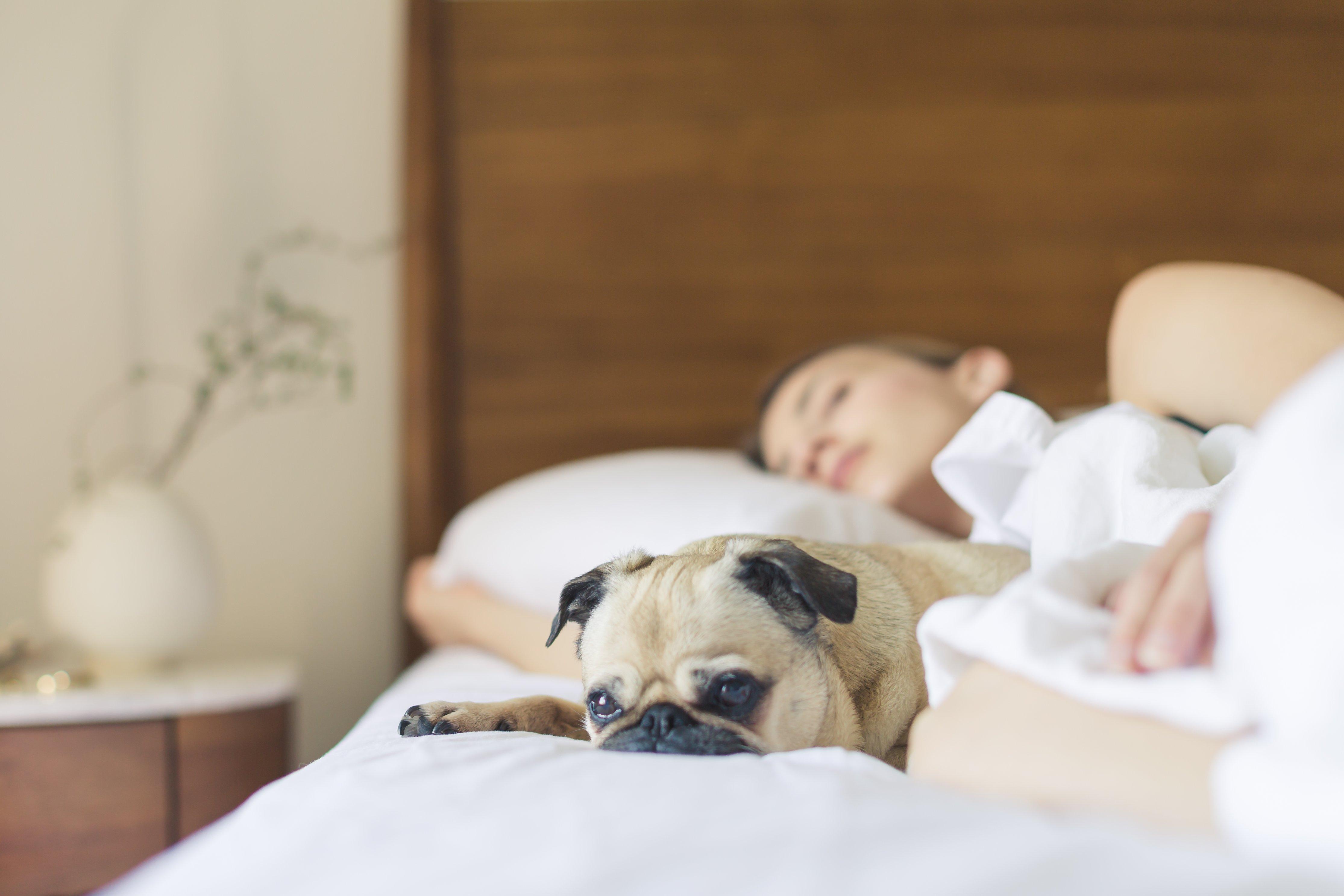良質な睡眠の秘訣