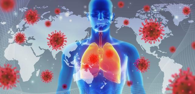 ウイルスに負けない!免疫力アップ方法