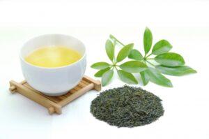 緑茶、紅茶、烏龍茶もアンチエイジングに効果的